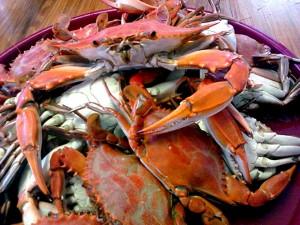 Dularge-Crabs